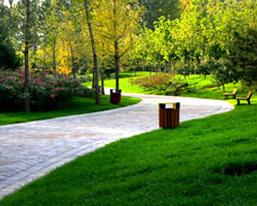 沧州万荣森林公园规划_项目案例 - 北京市园林古建设计研究院有限公司